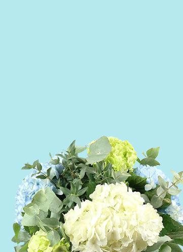 Same day Flowers Kennington